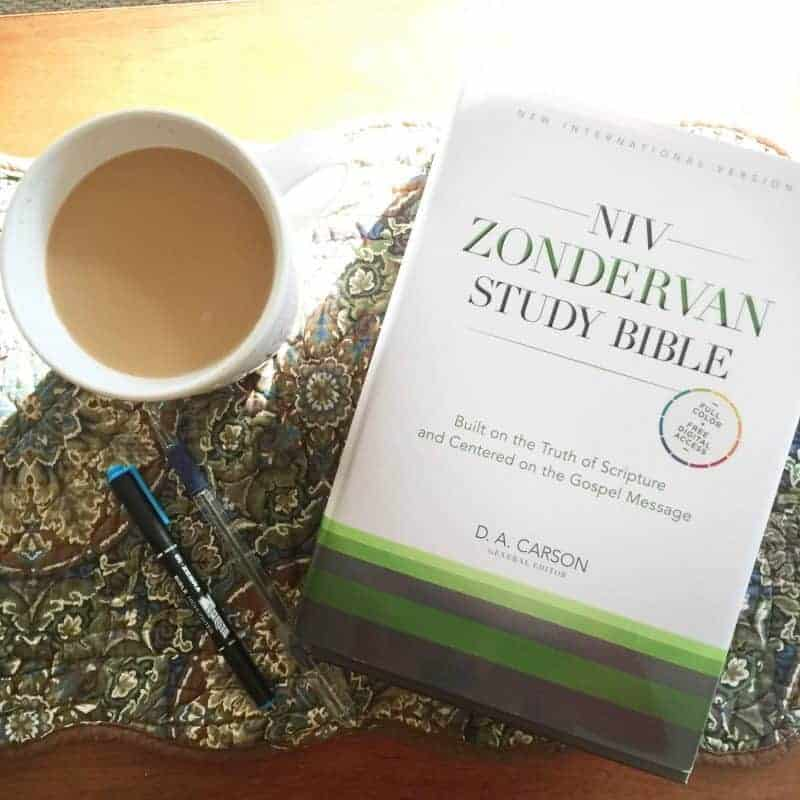 Win the New NIV Zondervan Study Bible