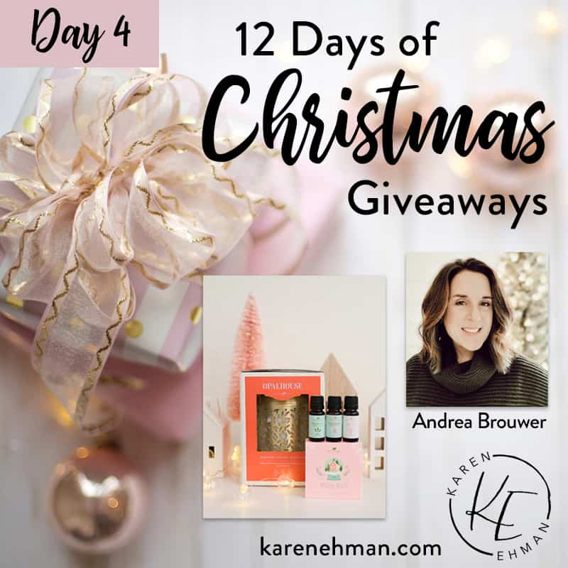 Day 4 of 12 Days of Christmas! (with Andrea Brouwer)